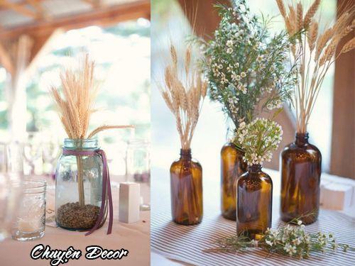 Hoa lúa mạch