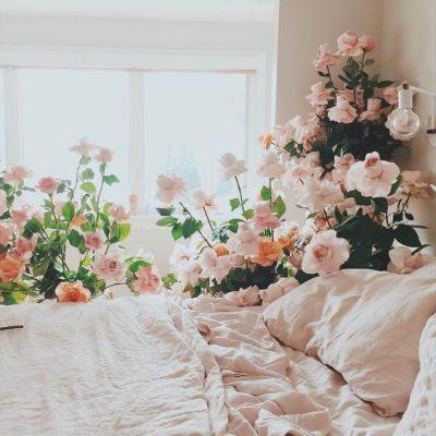 Bình và hoa giả để phòng ngủ